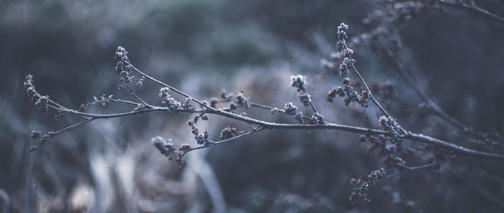 Drogowskazy chrześcijanina – 16 grudnia