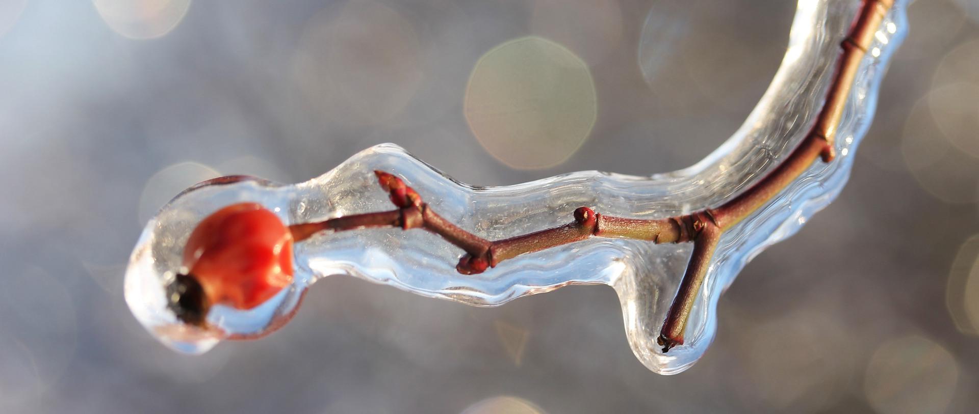 Drogowskazy chrześcijanina – 13 stycznia