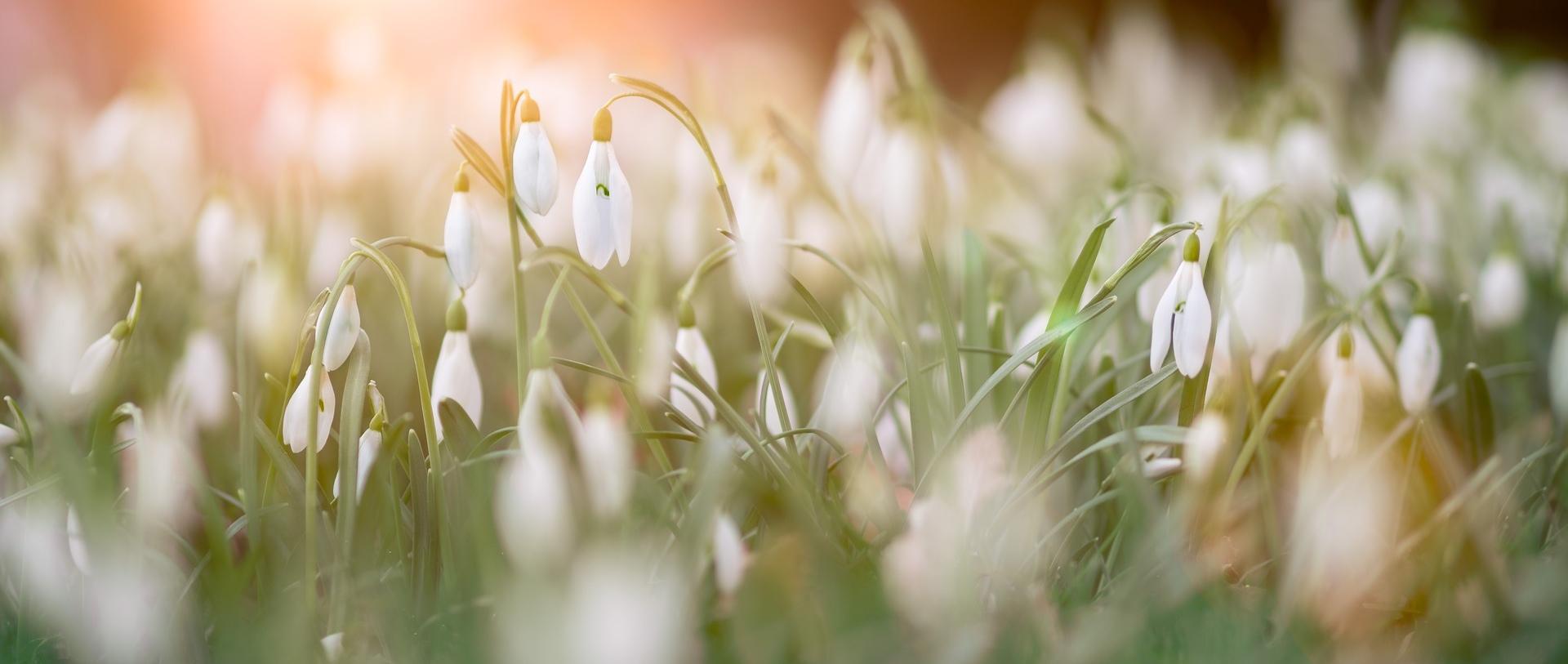 Drogowskazy chrześcijanina – 10 marca